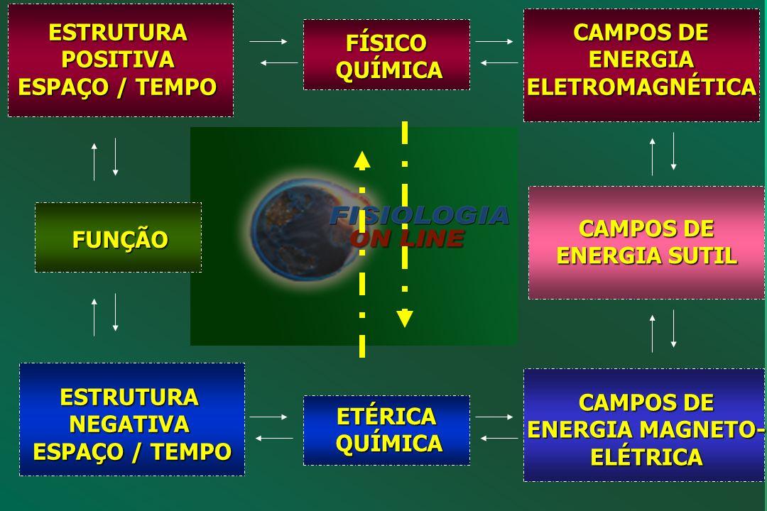 FUNÇÃO ESTRUTURA QUÍMICA CAMPOS DE ENERGIA SUTIL