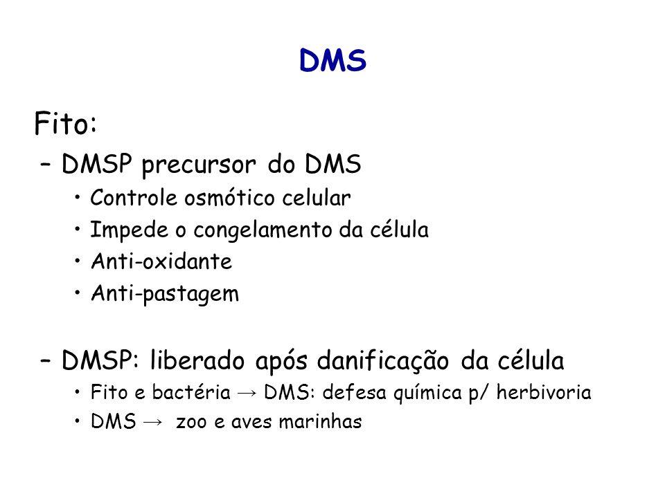 DMS Fito: –DMSP precursor do DMS Controle osmótico celular Impede o congelamento da célula Anti-oxidante Anti-pastagem –DMSP: liberado após danificaçã