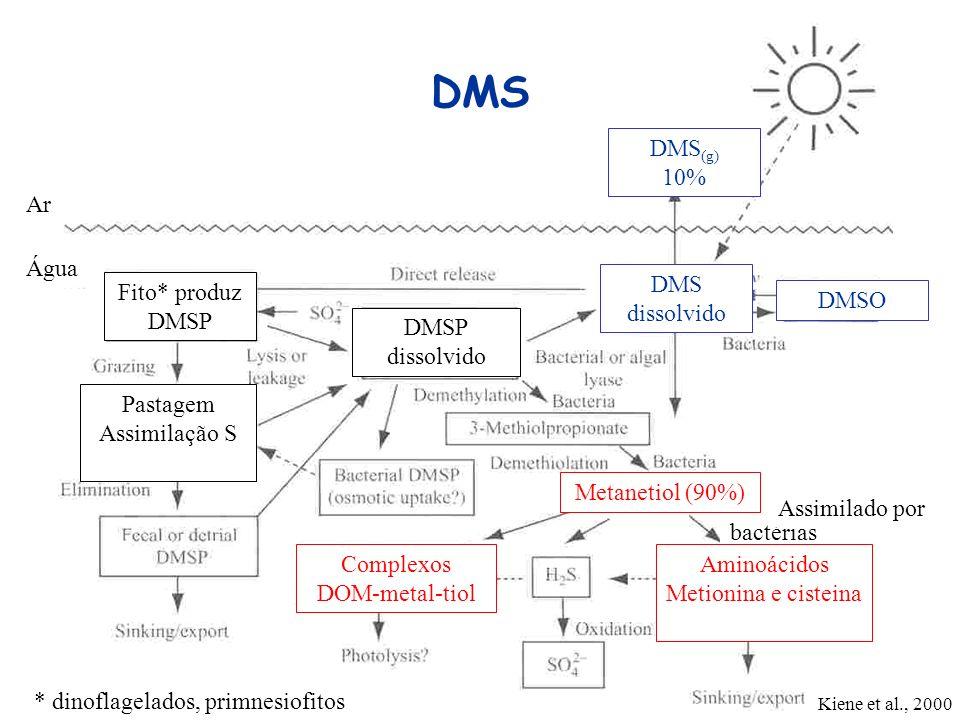 DMS Kiene et al., 2000 Fito* produz DMSP Ar Água * dinoflagelados, primnesiofitos Pastagem Assimilação S DMSP dissolvido DMS dissolvido DMS (g) 10% Co