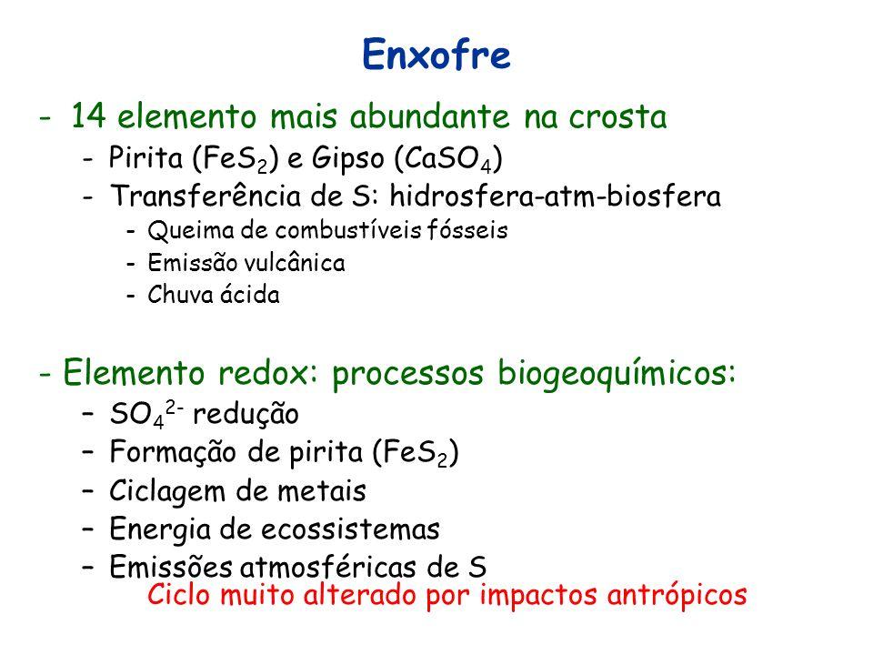 Enxofre -14 elemento mais abundante na crosta -Pirita (FeS 2 ) e Gipso (CaSO 4 ) -Transferência de S: hidrosfera-atm-biosfera -Queima de combustíveis