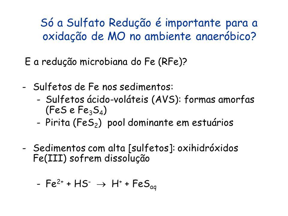 Só a Sulfato Redução é importante para a oxidação de MO no ambiente anaeróbico? E a redução microbiana do Fe (RFe)? -Sulfetos de Fe nos sedimentos: -S