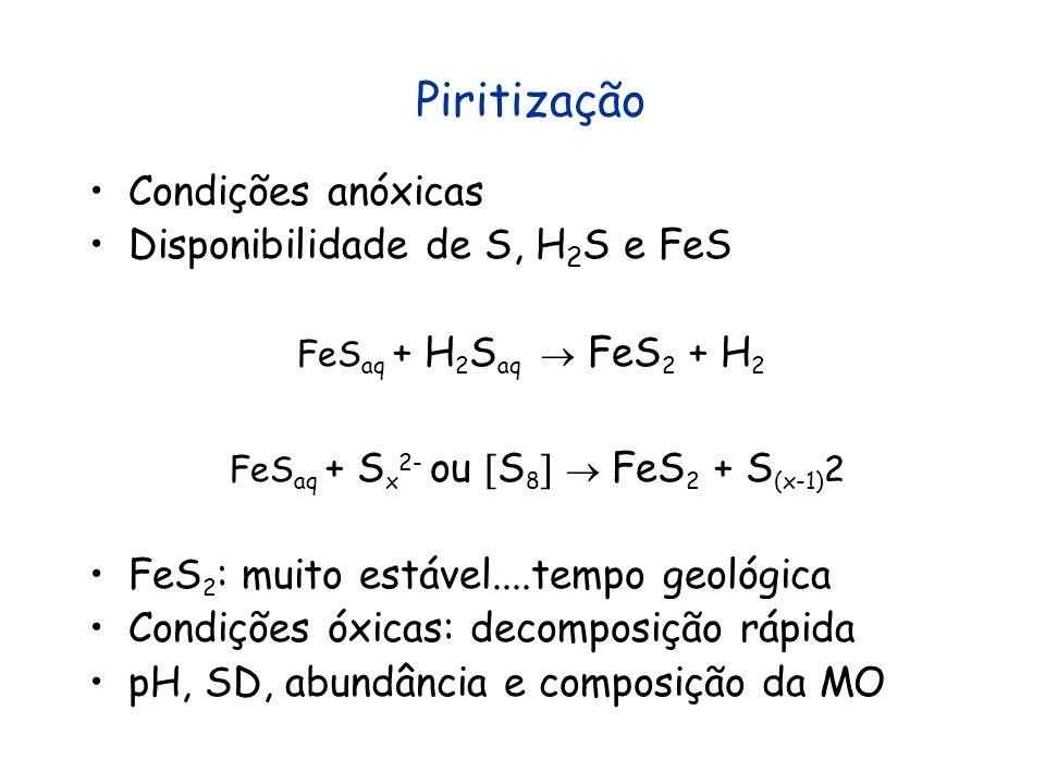 Piritização Condições anóxicas Disponibilidade de S, H 2 S e FeS FeS aq + H 2 S aq FeS 2 + H 2 FeS aq + S x 2- ou S 8 FeS 2 + S (x-1) 2 FeS 2 : muito