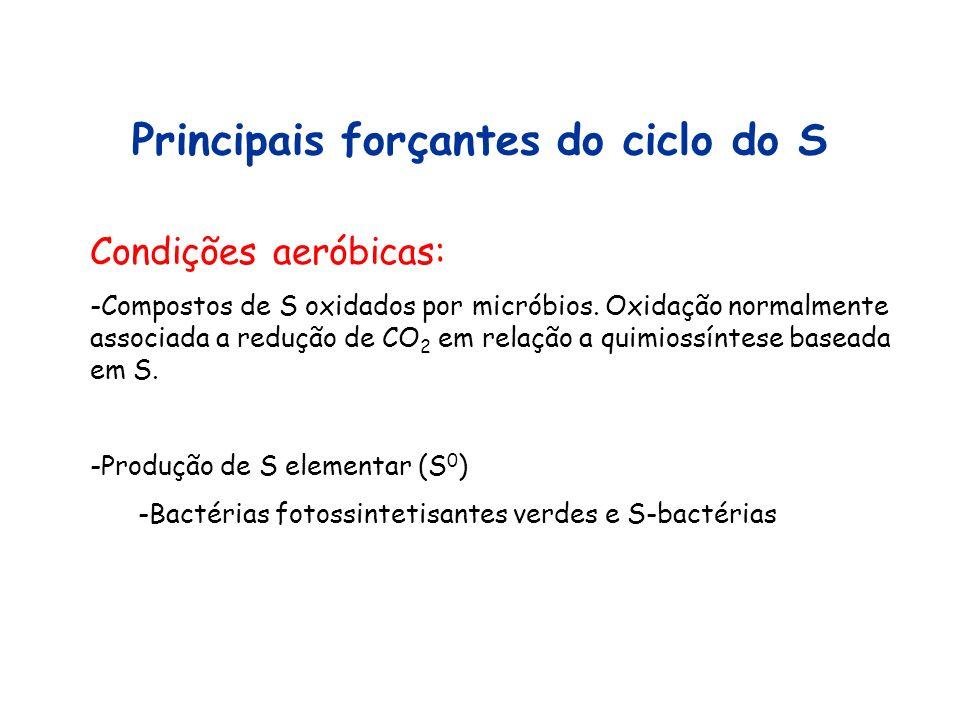 Principais forçantes do ciclo do S Condições aeróbicas: -Compostos de S oxidados por micróbios. Oxidação normalmente associada a redução de CO 2 em re