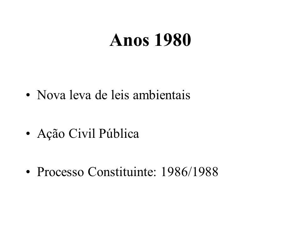 Anos 1980 Nova leva de leis ambientais Ação Civil Pública Processo Constituinte: 1986/1988
