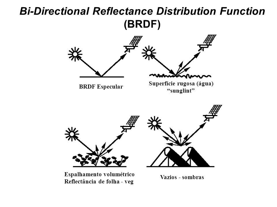 BRDF Especular Espalhamento volumétrico Reflectância de folha - veg Superfície rugosa (água) sunglint Vazios - sombras Bi-Directional Reflectance Dist