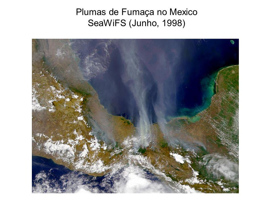 Plumas de Fumaça no Mexico SeaWiFS (Junho, 1998)