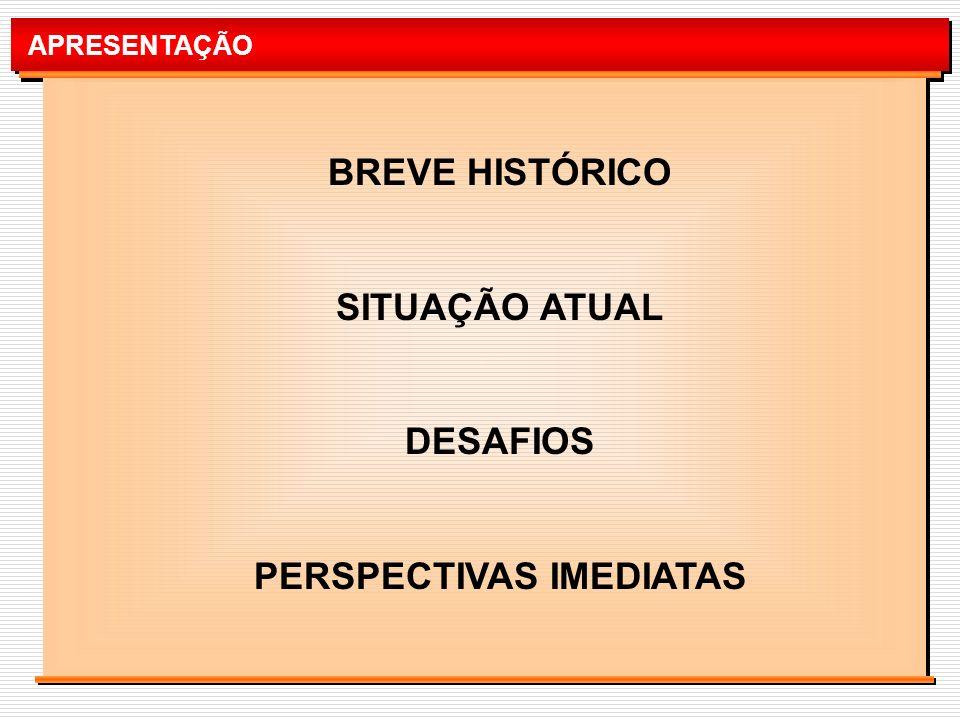APRESENTAÇÃO BREVE HISTÓRICO SITUAÇÃO ATUAL DESAFIOS PERSPECTIVAS IMEDIATAS