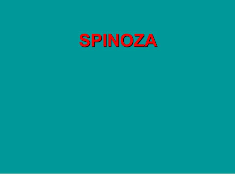 Spinoza (1632-1677) Filósofo racionalista.Para uns um ateu, para outros um ébrio de Deus...