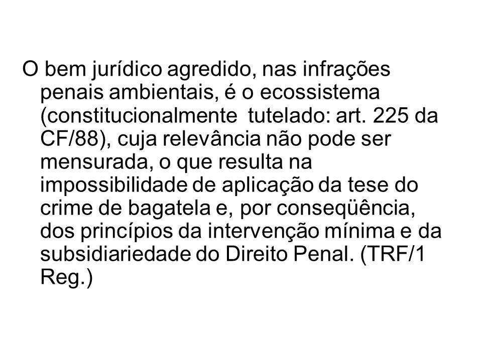 O bem jurídico agredido, nas infrações penais ambientais, é o ecossistema (constitucionalmente tutelado: art. 225 da CF/88), cuja relevância não pode