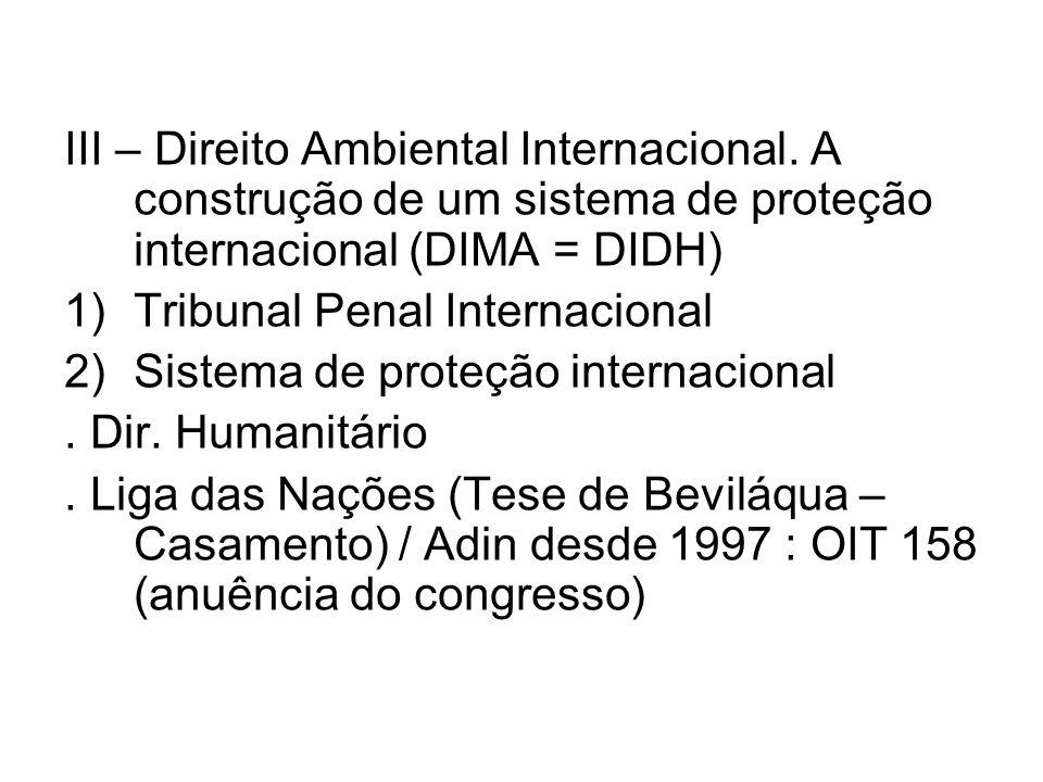 III – Direito Ambiental Internacional.