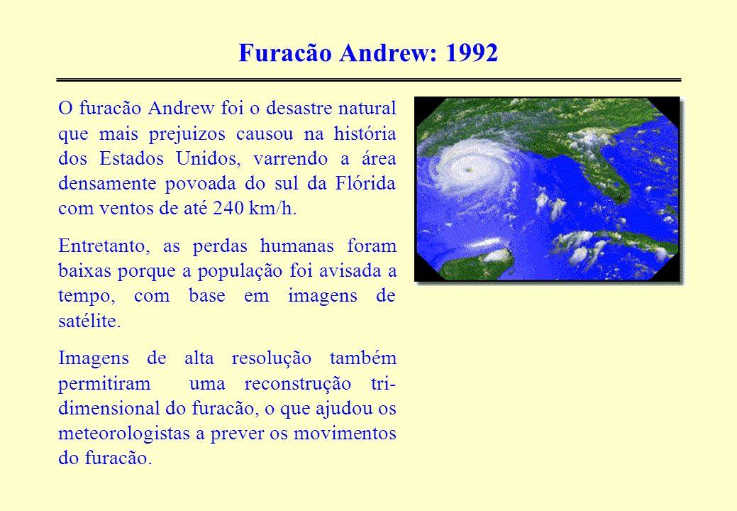 Furacão Andrew: 1992 O furacão Andrew foi o desastre natural que mais prejuizos causou na história dos Estados Unidos, varrendo a área densamente povo