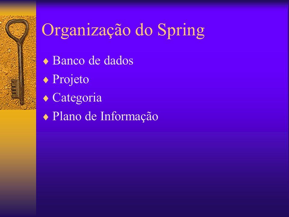 Organização do Spring Banco de dados Projeto Categoria Plano de Informação
