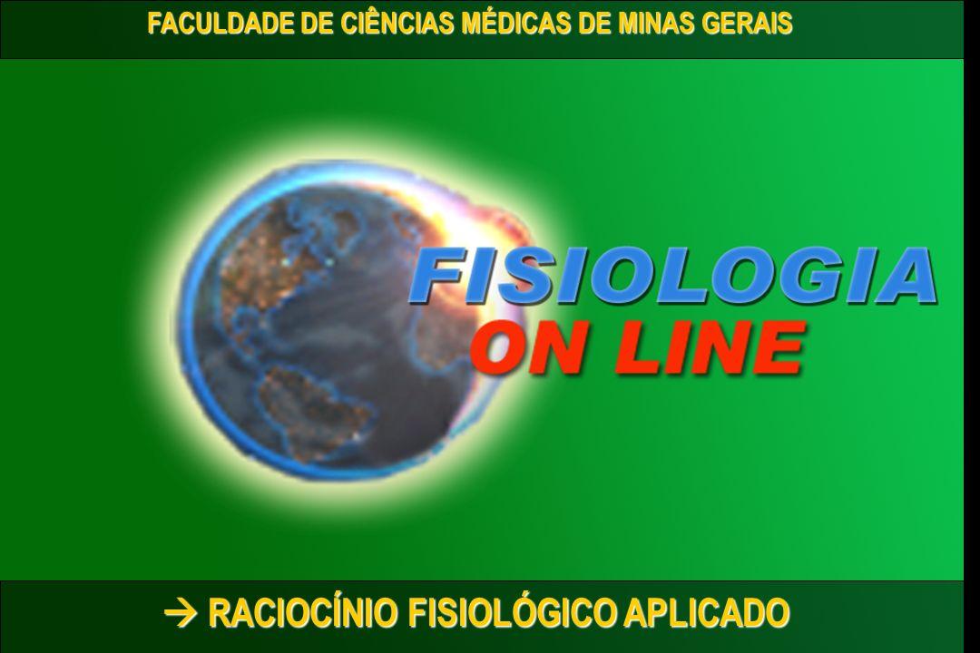Reinaldo O.