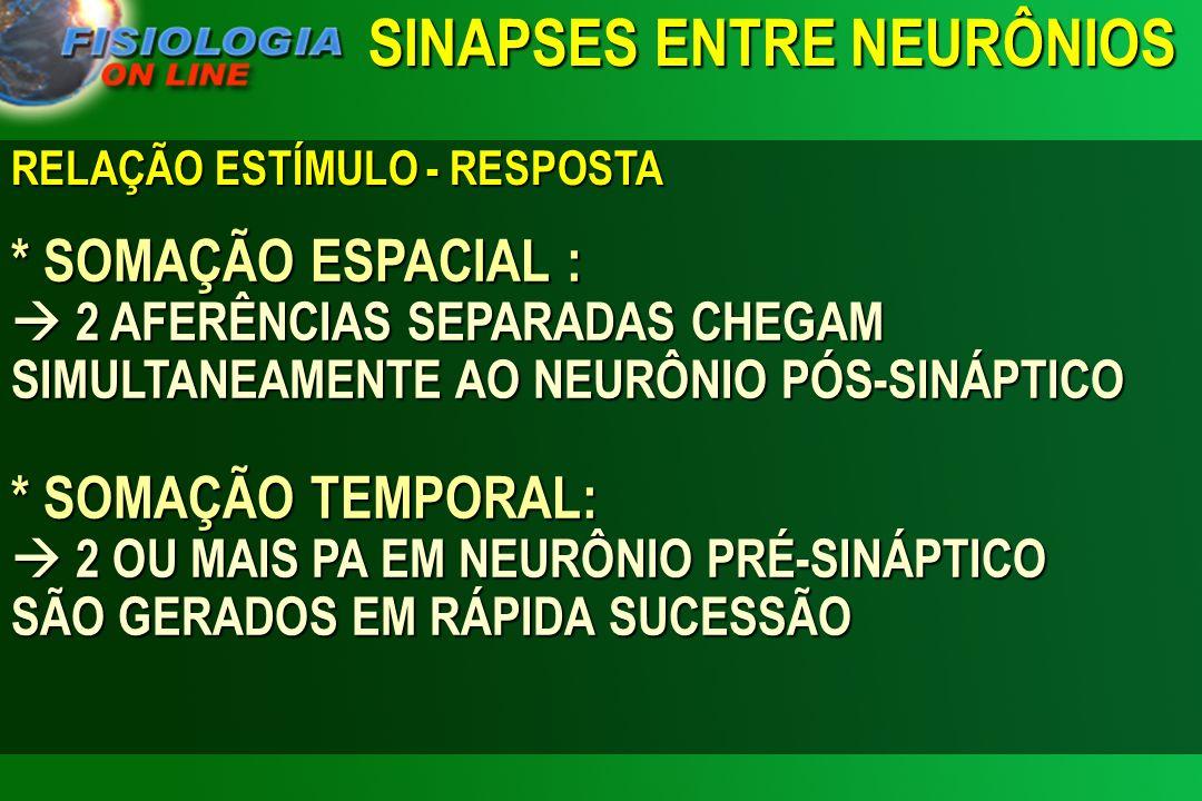 RELAÇÃO ESTÍMULO - RESPOSTA * SOMAÇÃO ESPACIAL : 2 AFERÊNCIAS SEPARADAS CHEGAM SIMULTANEAMENTE AO NEURÔNIO PÓS-SINÁPTICO * SOMAÇÃO TEMPORAL: 2 OU MAIS