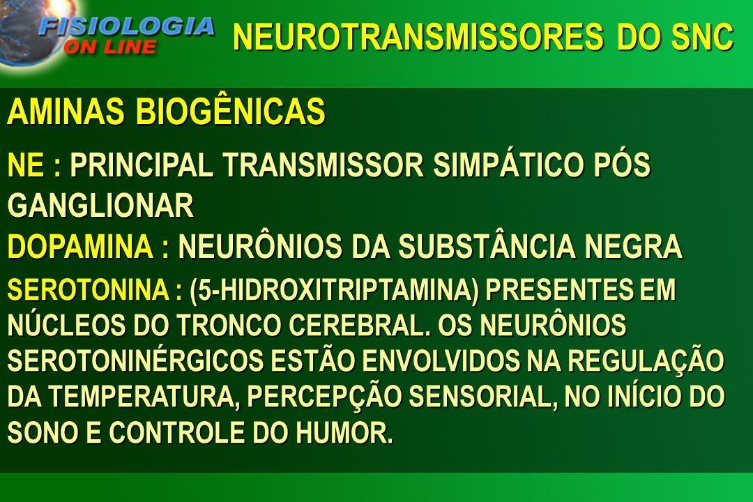 AMINAS BIOGÊNICAS NE : PRINCIPAL TRANSMISSOR SIMPÁTICO PÓS GANGLIONAR DOPAMINA : NEURÔNIOS DA SUBSTÂNCIA NEGRA SEROTONINA : (5-HIDROXITRIPTAMINA) PRES