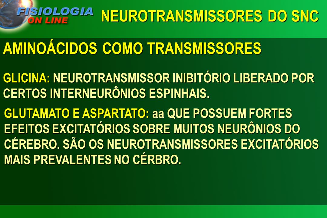 AMINOÁCIDOS COMO TRANSMISSORES GLICINA: NEUROTRANSMISSOR INIBITÓRIO LIBERADO POR CERTOS INTERNEURÔNIOS ESPINHAIS. GLUTAMATO E ASPARTATO: aa QUE POSSUE