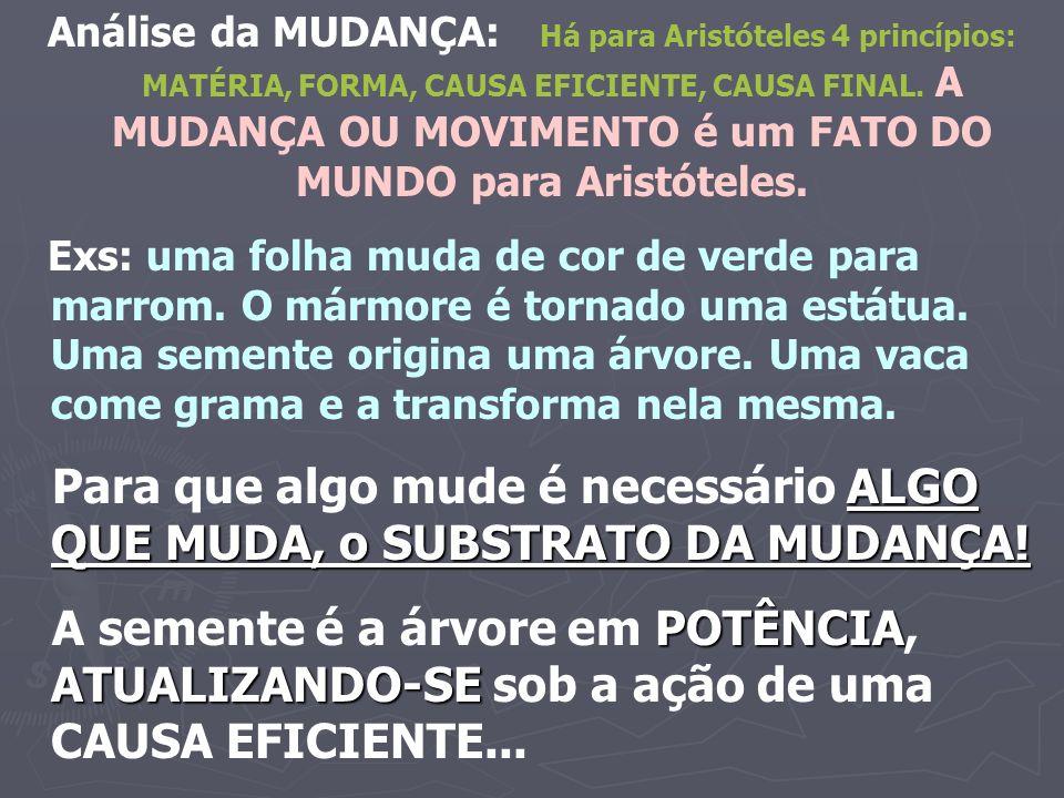 Análise da MUDANÇA: Há para Aristóteles 4 princípios: MATÉRIA, FORMA, CAUSA EFICIENTE, CAUSA FINAL. A MUDANÇA OU MOVIMENTO é um FATO DO MUNDO para Ari