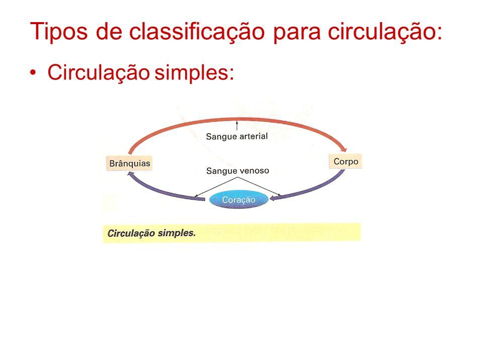 Tipos de classificação para circulação: Circulação simples: