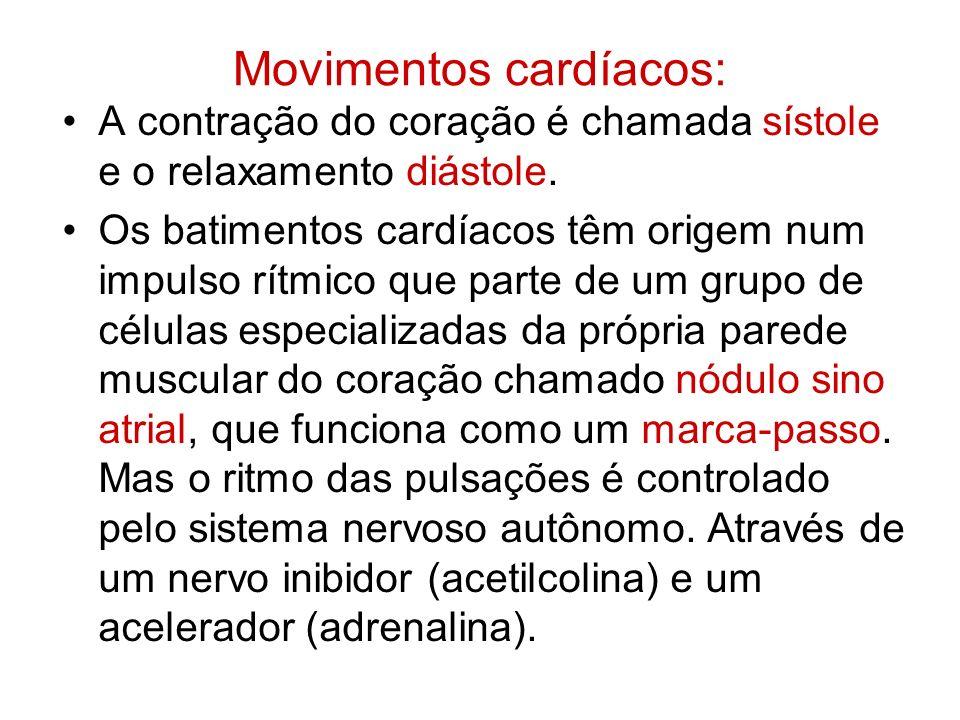 Movimentos cardíacos: A contração do coração é chamada sístole e o relaxamento diástole. Os batimentos cardíacos têm origem num impulso rítmico que pa