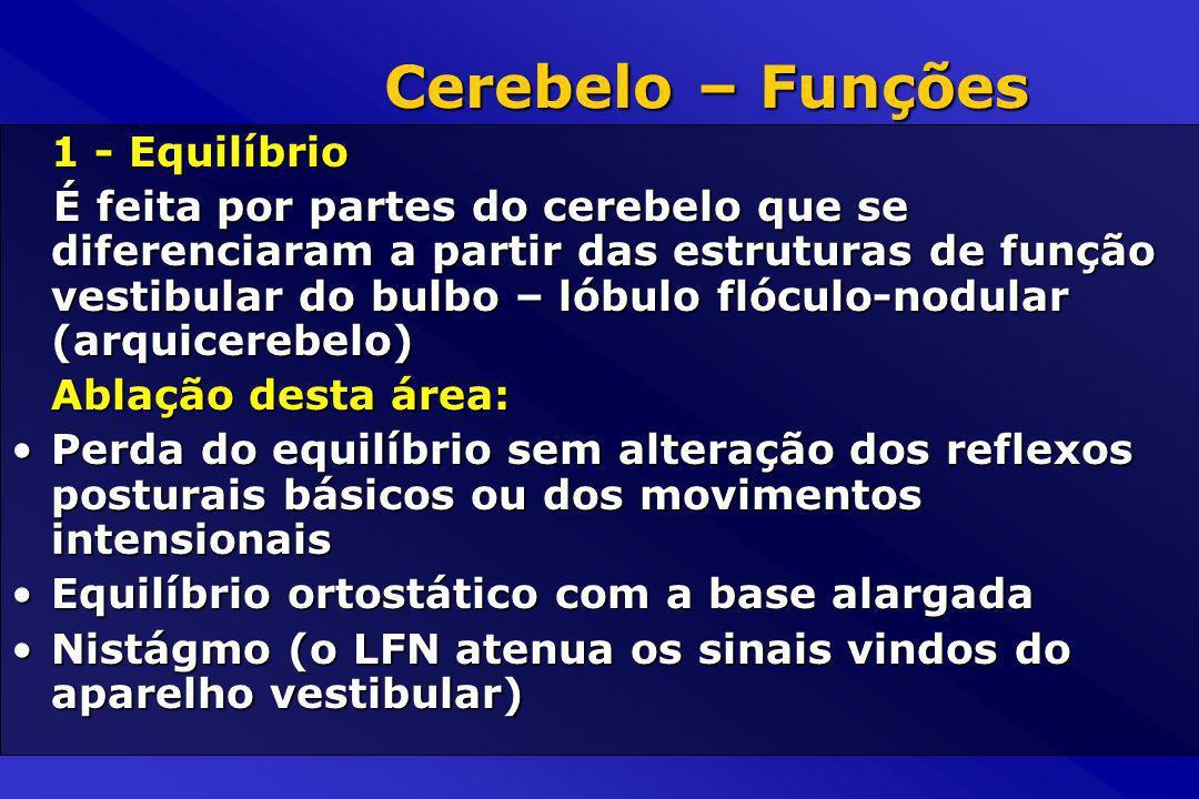 1 - Equilíbrio É feita por partes do cerebelo que se diferenciaram a partir das estruturas de função vestibular do bulbo – lóbulo flóculo-nodular (arq