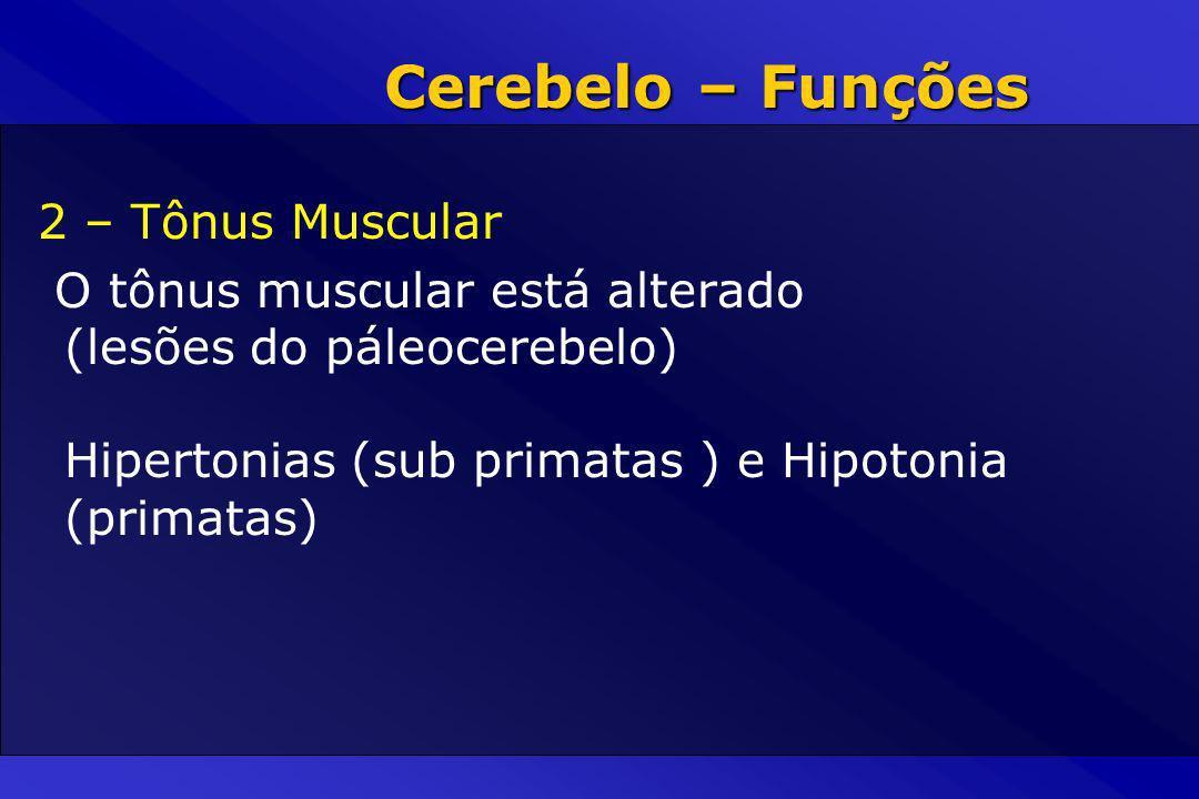 2 – Tônus Muscular O tônus muscular está alterado (lesões do páleocerebelo) Hipertonias (sub primatas ) e Hipotonia (primatas) Cerebelo – Funções