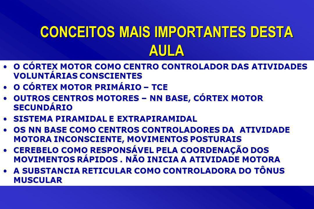 CONCEITOS MAIS IMPORTANTES DESTA AULA O CÓRTEX MOTOR COMO CENTRO CONTROLADOR DAS ATIVIDADES VOLUNTÁRIAS CONSCIENTESO CÓRTEX MOTOR COMO CENTRO CONTROLA