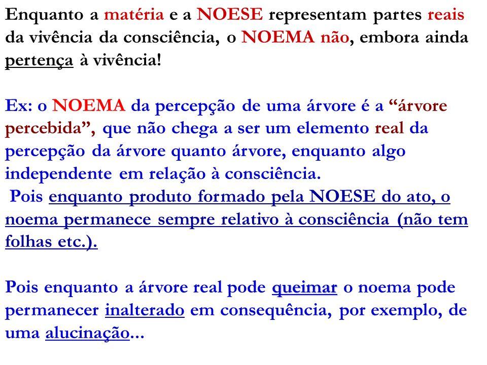 Enquanto a matéria e a NOESE representam partes reais da vivência da consciência, o NOEMA não, embora ainda pertença à vivência! Ex: o NOEMA da percep
