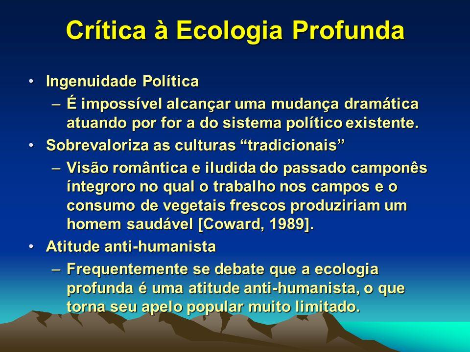 Crítica à Ecologia Profunda Ingenuidade PolíticaIngenuidade Política –É impossível alcançar uma mudança dramática atuando por for a do sistema polític