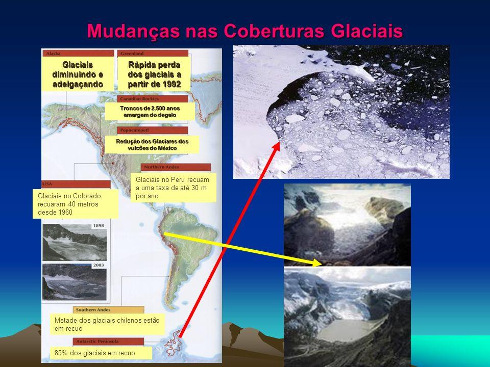 Mudanças nas Coberturas Glaciais Glaciais diminuindo e adelgaçando Rápida perda dos glaciais a partir de 1992 Troncos de 2.500 anos emergem do degelo