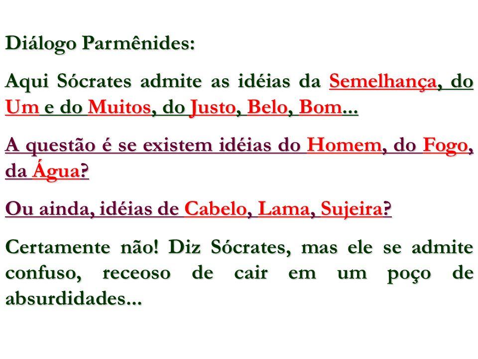 Diálogo Parmênides: Aqui Sócrates admite as idéias da Semelhança, do Um e do Muitos, do Justo, Belo, Bom... A questão é se existem idéias do Homem, do