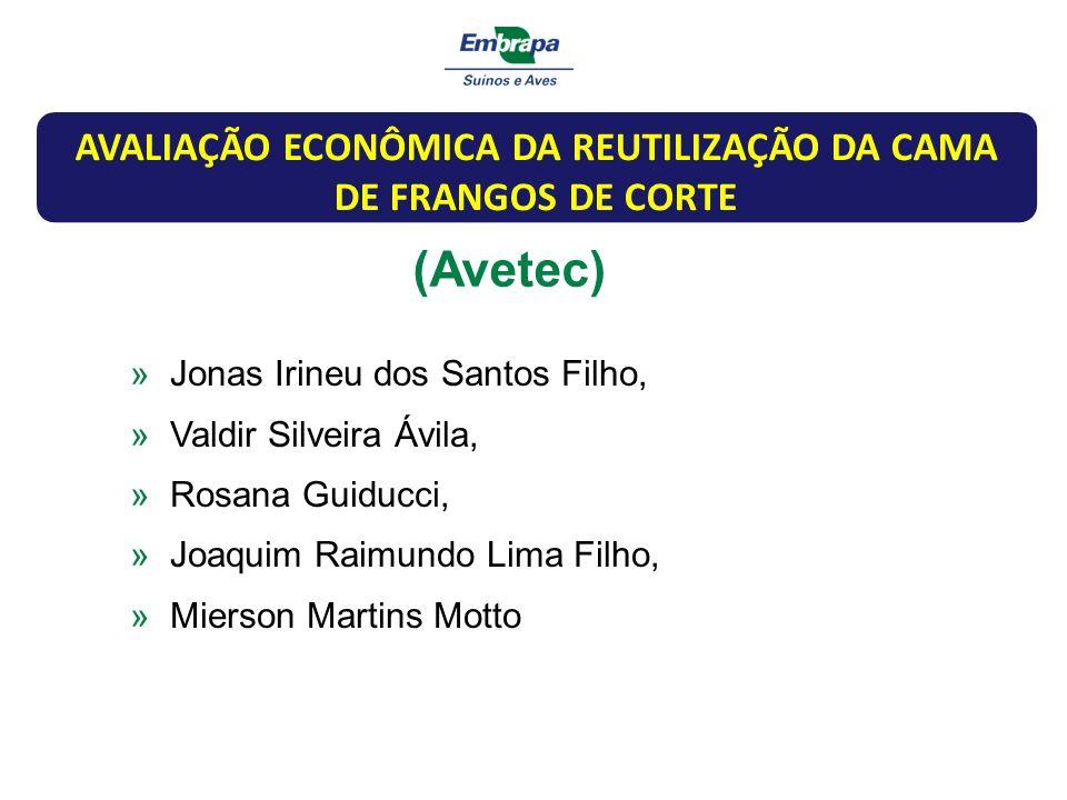 (Avetec) »Jonas Irineu dos Santos Filho, »Valdir Silveira Ávila, »Rosana Guiducci, »Joaquim Raimundo Lima Filho, »Mierson Martins Motto AVALIAÇÃO ECON