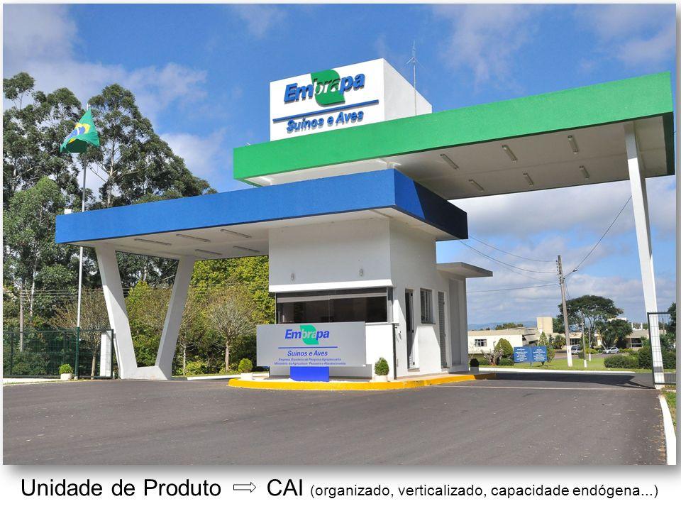 Unidade de Produto CAI (organizado, verticalizado, capacidade endógena...)