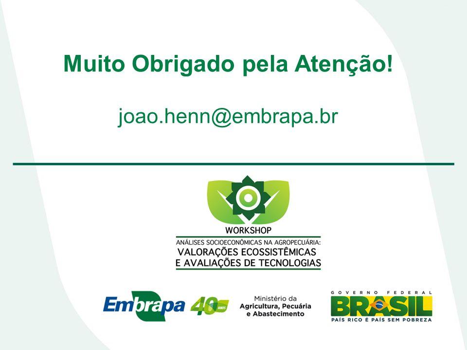 Muito Obrigado pela Atenção! joao.henn@embrapa.br