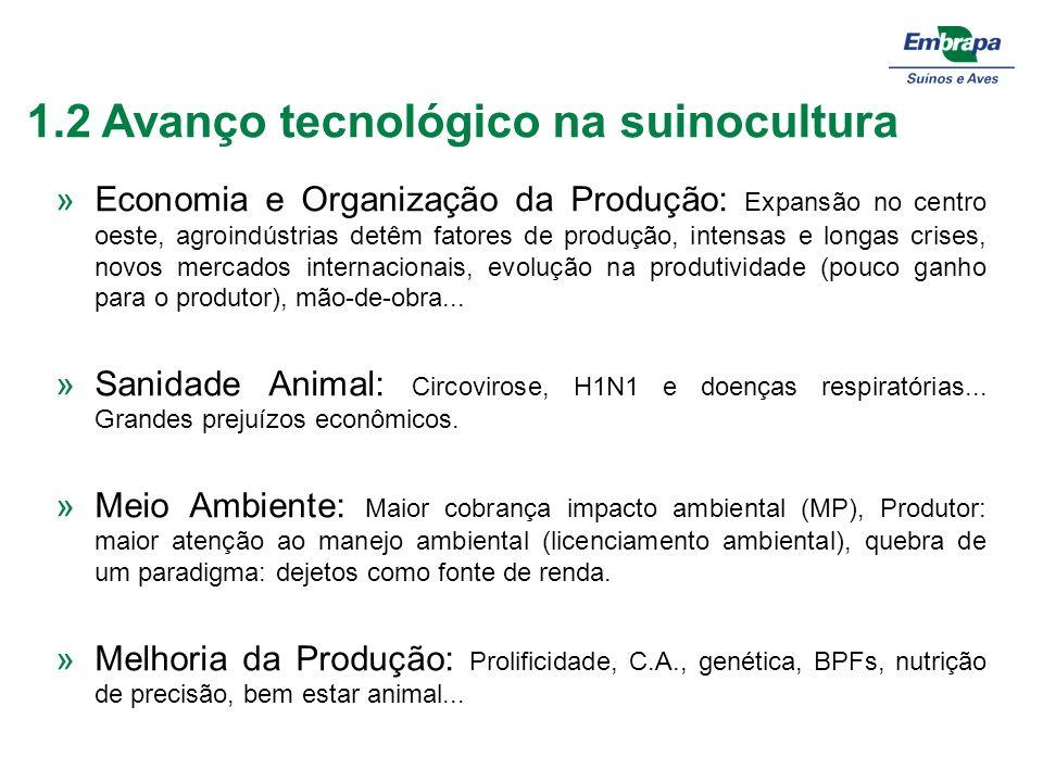1.2 Avanço tecnológico na suinocultura »Economia e Organização da Produção: Expansão no centro oeste, agroindústrias detêm fatores de produção, intens