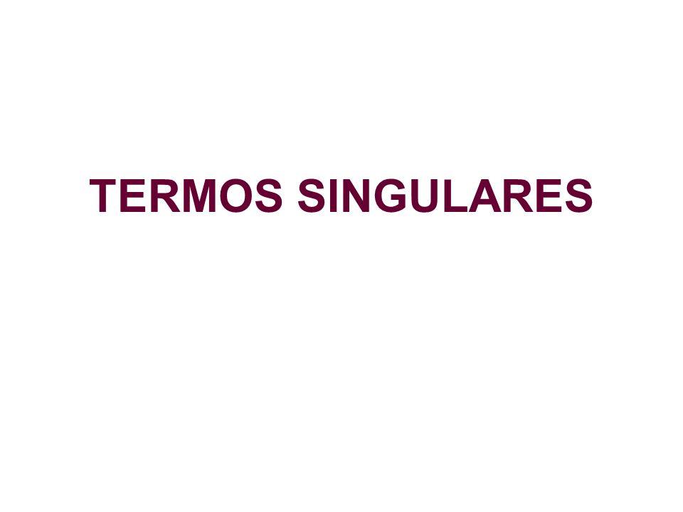 TERMOS SINGULARES