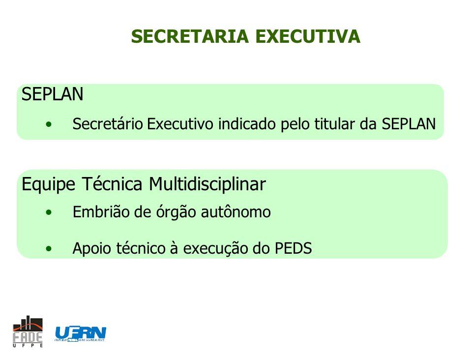 SECRETARIA EXECUTIVA SEPLAN Secretário Executivo indicado pelo titular da SEPLAN Equipe Técnica Multidisciplinar Embrião de órgão autônomo Apoio técnico à execução do PEDS