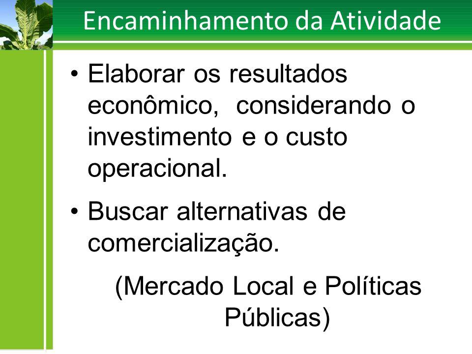 Encaminhamento da Atividade Elaborar os resultados econômico, considerando o investimento e o custo operacional. Buscar alternativas de comercializaçã