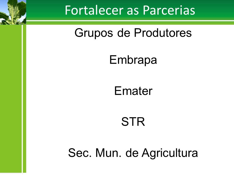 Fortalecer as Parcerias Grupos de Produtores Embrapa Emater STR Sec. Mun. de Agricultura