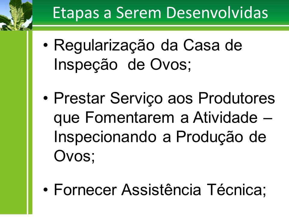 Etapas a Serem Desenvolvidas Regularização da Casa de Inspeção de Ovos; Prestar Serviço aos Produtores que Fomentarem a Atividade – Inspecionando a Pr