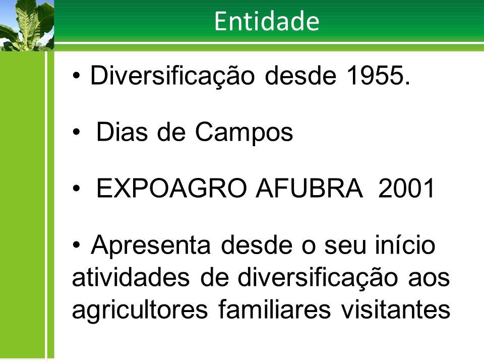 Entidade Diversificação desde 1955. Dias de Campos EXPOAGRO AFUBRA 2001 Apresenta desde o seu início atividades de diversificação aos agricultores fam