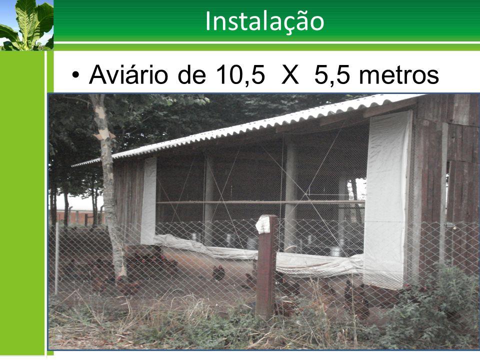 Instalação Área Total Cercado 2.400 m²