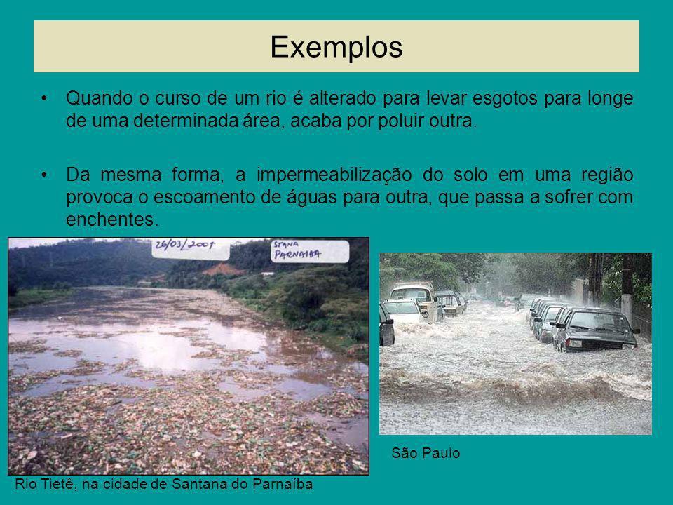 Exemplos Quando o curso de um rio é alterado para levar esgotos para longe de uma determinada área, acaba por poluir outra. Da mesma forma, a impermea