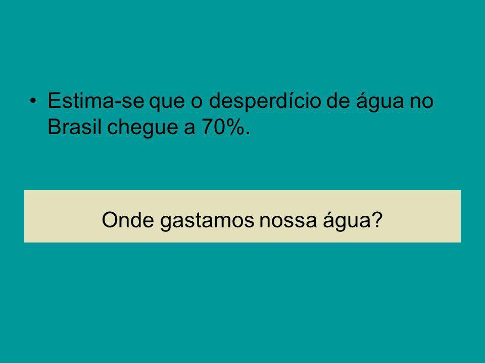 Onde gastamos nossa água? Estima-se que o desperdício de água no Brasil chegue a 70%.