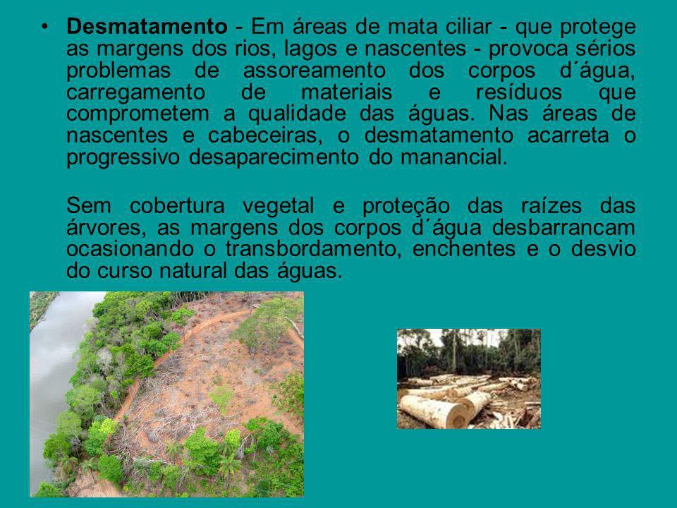 Desmatamento - Em áreas de mata ciliar - que protege as margens dos rios, lagos e nascentes - provoca sérios problemas de assoreamento dos corpos d´ág