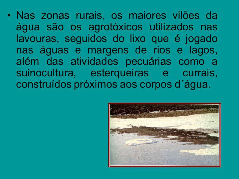 Nas zonas rurais, os maiores vilões da água são os agrotóxicos utilizados nas lavouras, seguidos do lixo que é jogado nas águas e margens de rios e la
