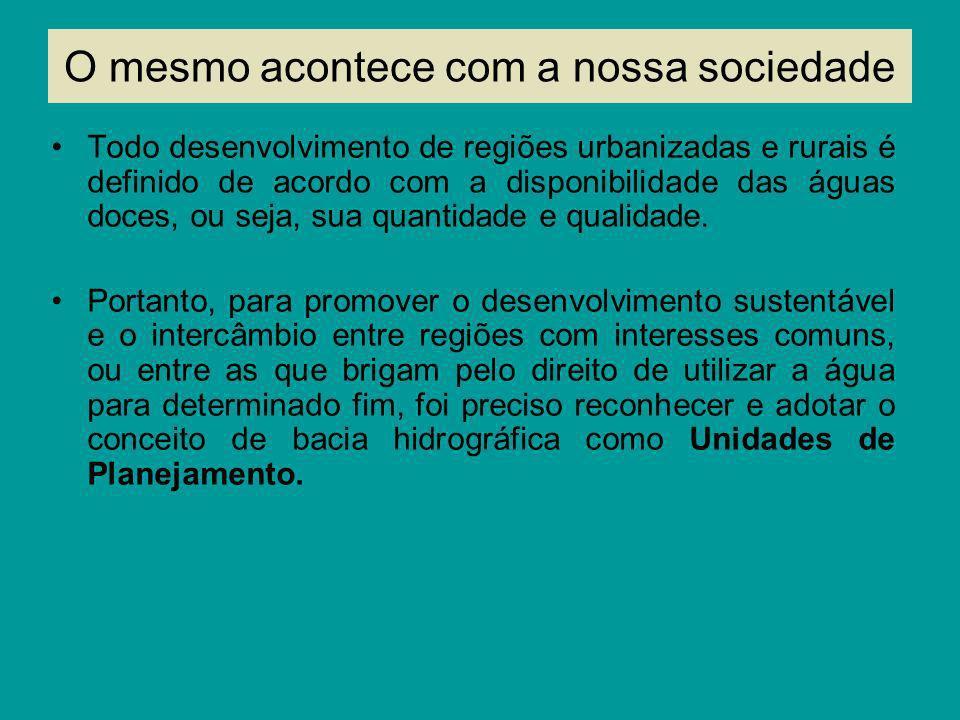 Os comitês são colegiados compostos por representantes de municípios (prefeitos), de órgãos estaduais e de entidades representativas da sociedade civil (ONGS, universidades, associações) em igual número.