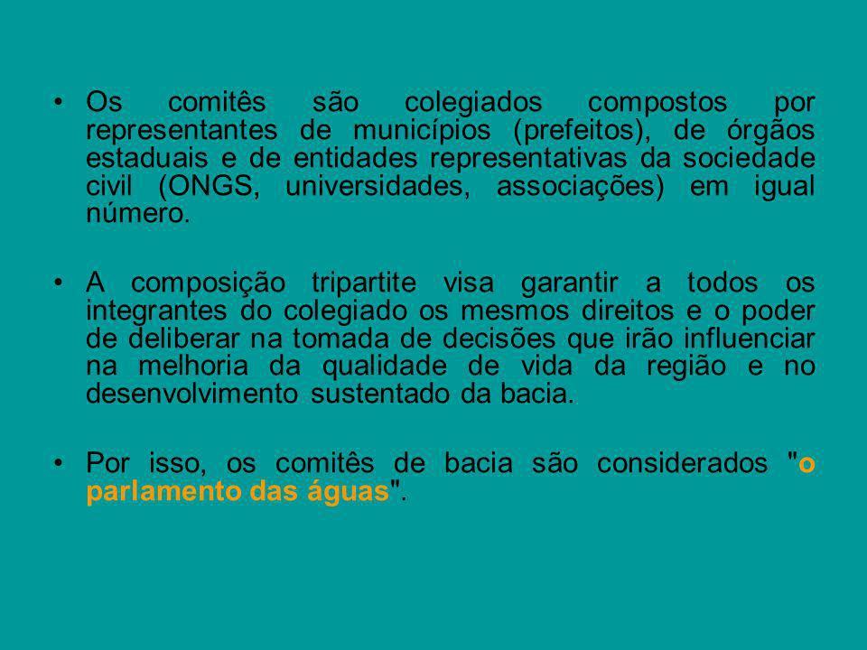 Os comitês são colegiados compostos por representantes de municípios (prefeitos), de órgãos estaduais e de entidades representativas da sociedade civi