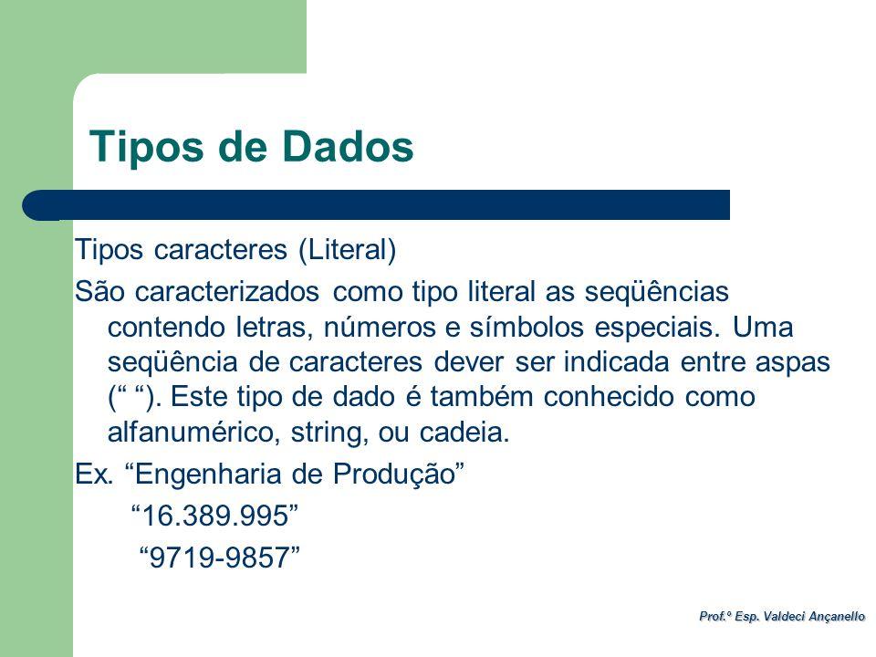 Prof.º Esp. Valdeci Ançanello Tipos de Dados Tipos caracteres (Literal) São caracterizados como tipo literal as seqüências contendo letras, números e