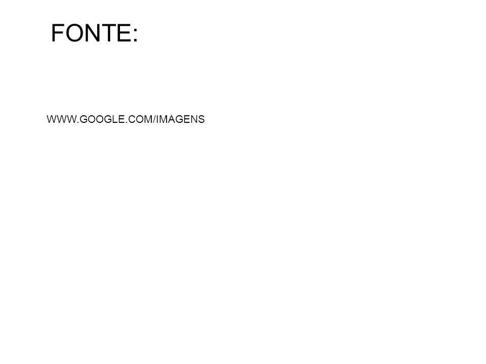 FONTE: WWW.GOOGLE.COM/IMAGENS