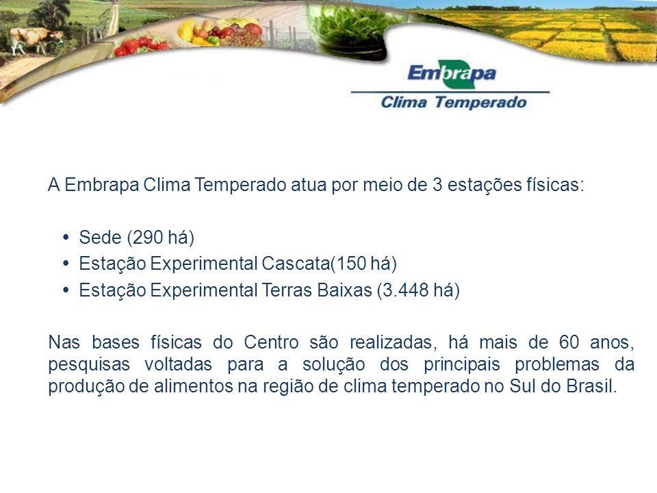 A Embrapa Clima Temperado atua por meio de 3 estações físicas: Sede (290 há) Estação Experimental Cascata(150 há) Estação Experimental Terras Baixas (